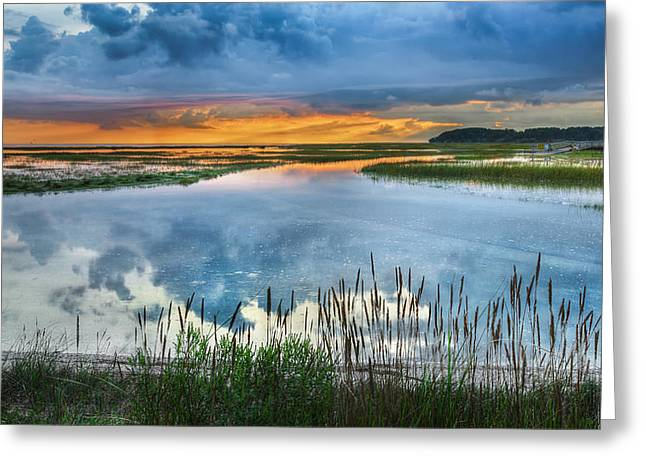 Cape Cod National Seashore Greeting Cards - Road to Lieutenant Island Greeting Card by Bill  Wakeley