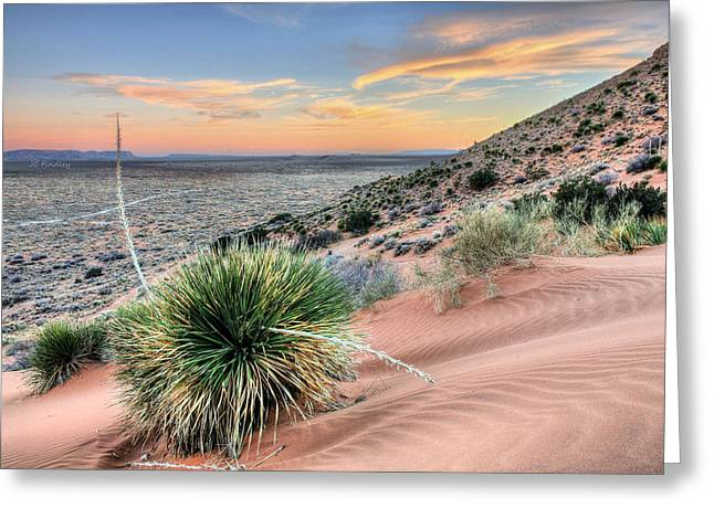 West Tx Greeting Cards - Road to Mexico Greeting Card by JC Findley