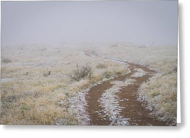 Foggy Road Greeting Cards - Road to nowhere Greeting Card by Chelsea Stockton