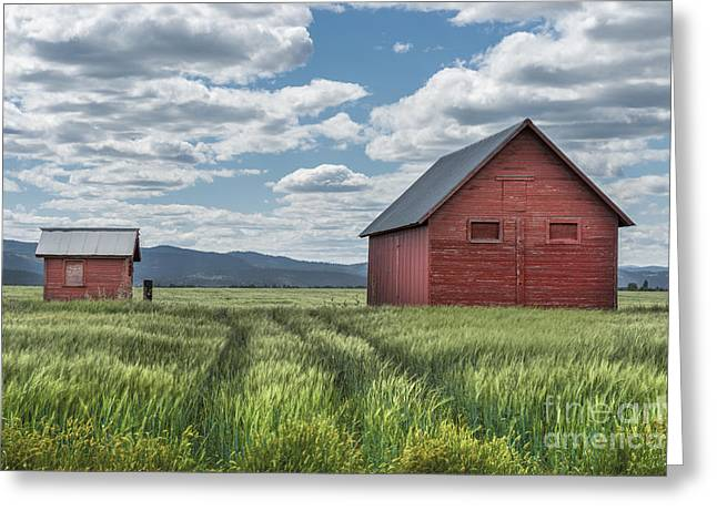 Red Buildings Greeting Cards - Road To Nowhere Greeting Card by Sandra Bronstein
