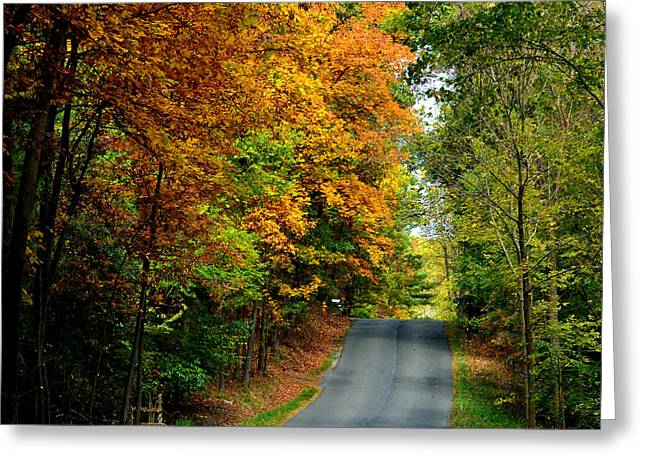 Road To Riches Greeting Card by Carlee Ojeda