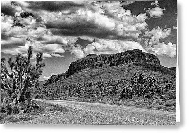 Gravel Road Digital Art Greeting Cards - Road To Skywalk Greeting Card by Ron Regalado