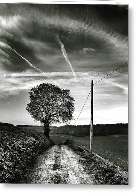 Black And White Nature Landscapes Greeting Cards - Road to the Farm Greeting Card by Mark Rogan