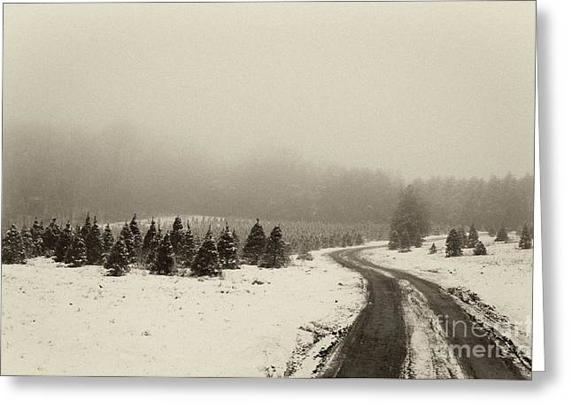 Indiana Christmas Greeting Cards - Road to the Past- D008689-bw Greeting Card by Daniel Dempster