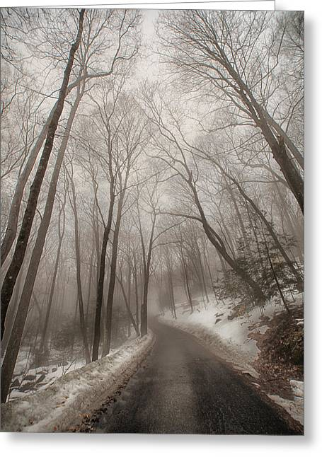 Road To Winter Greeting Card by Karol Livote