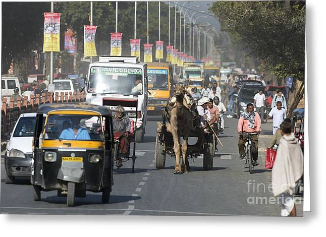 Cart Driving Greeting Cards - Road Traffic In India Greeting Card by Tony Camacho