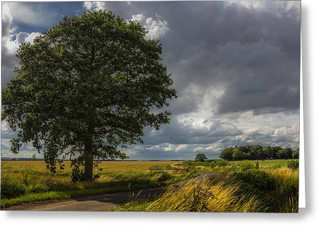 Field. Cloud Greeting Cards - Roadside Greeting Card by Chris Fletcher