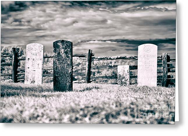 Headstones Greeting Cards - Roadside Memories Greeting Card by Dan Carmichael