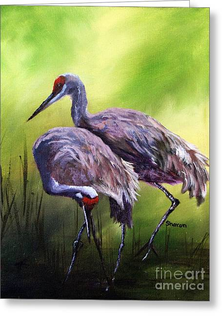 Sandhill Cranes Paintings Greeting Cards - Roamin in the Gloamin Greeting Card by Sharon Burger