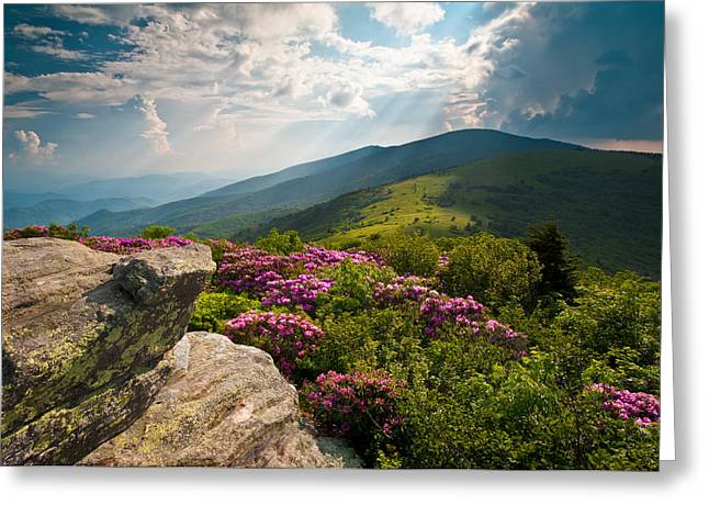 Light Rays Greeting Cards - Roan Mountain from Appalachian Trail near Janes Bald Greeting Card by Dave Allen