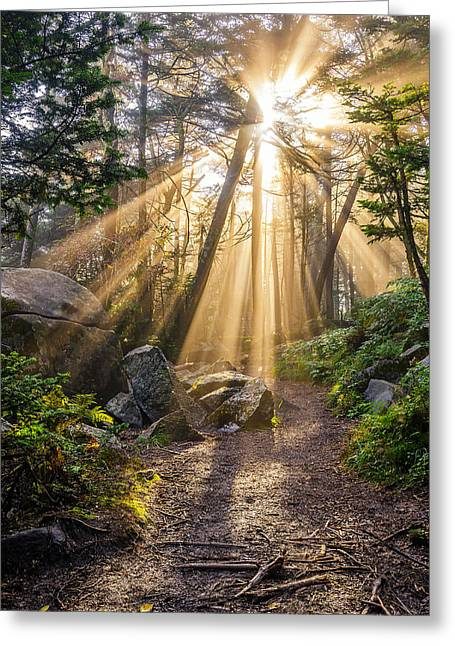 Crepuscular Rays Greeting Cards - Roan Mountain light Greeting Card by Anthony Heflin