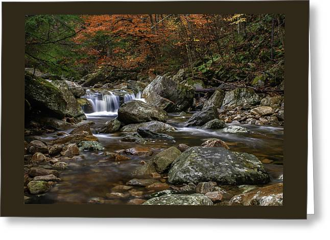 Waterfall Greeting Cards - Roaring Brook - Sunderland Vermont autumn scene  Greeting Card by Thomas Schoeller