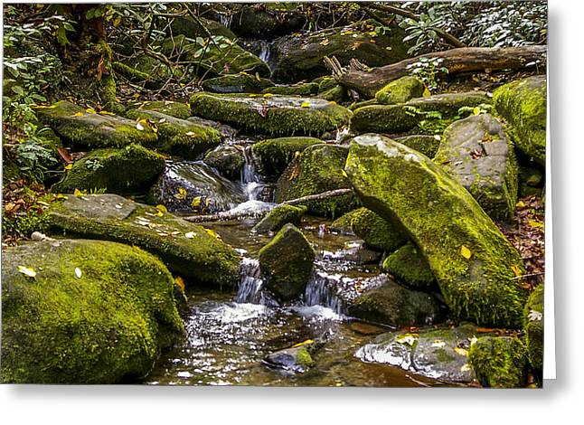 Gatlinburg Tennessee Greeting Cards - Roaring Fork 2 Greeting Card by Nancy L Marshall