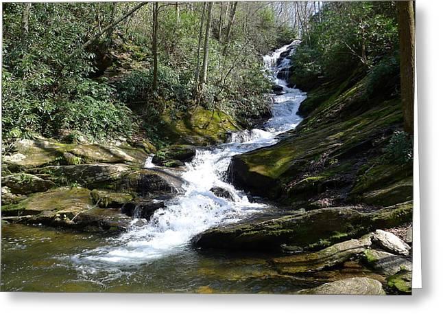 Roaring Fork Falls - Spring 2013 Greeting Card by Joel Deutsch