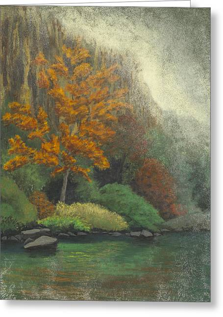 Buffalo River Pastels Greeting Cards - Roark Bluff Greeting Card by Garry McMichael
