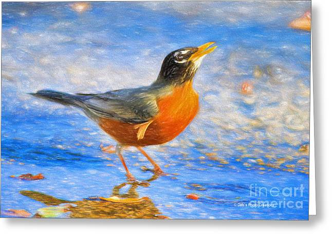 Puddle Mixed Media Greeting Cards - Robin in Florida Greeting Card by Deborah Benoit