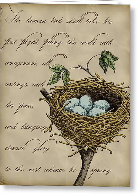 Nest Greeting Cards - Robins Nest Greeting Card by Christy Beckwith