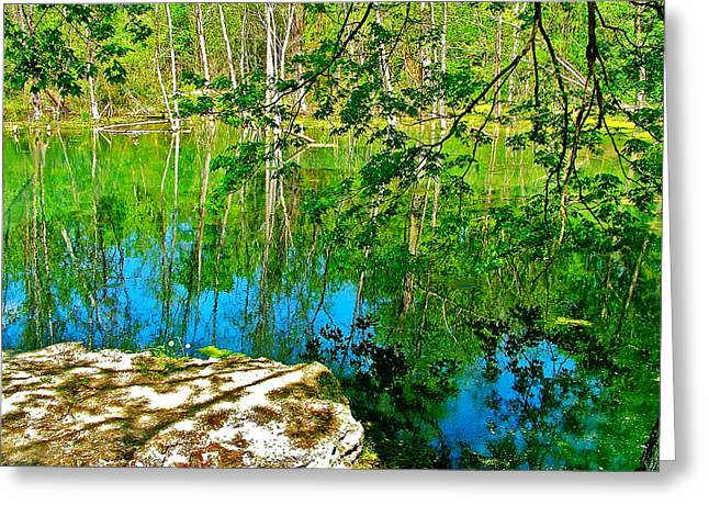 Near Natchez Trace Parkway Greeting Cards - Rock and Spring on Rock Spring Trail near Natchez Trace Parkway-Alabama  Greeting Card by Ruth Hager