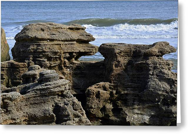 Bruce Photos Greeting Cards - Rock Art on the Florida Coast Greeting Card by Bruce Gourley