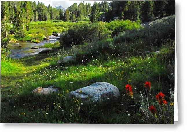 Little Lakes Valley Greeting Cards - Rock Creek Beauty Greeting Card by Lynn Bauer