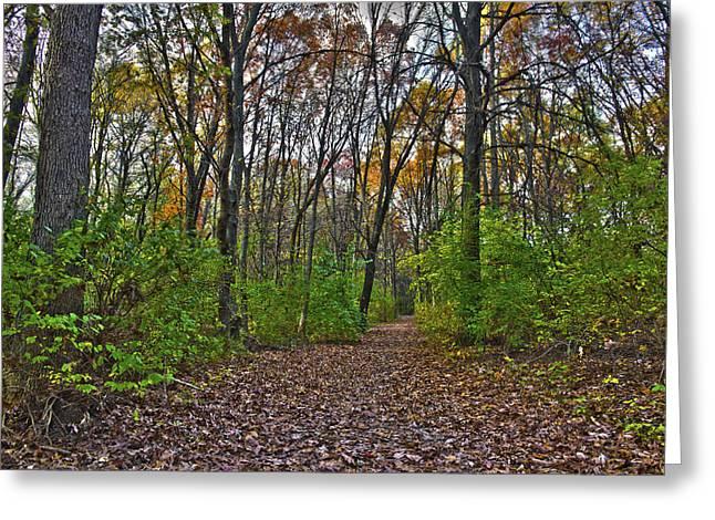 Rock Cut Path 2 Greeting Card by Jim Baker