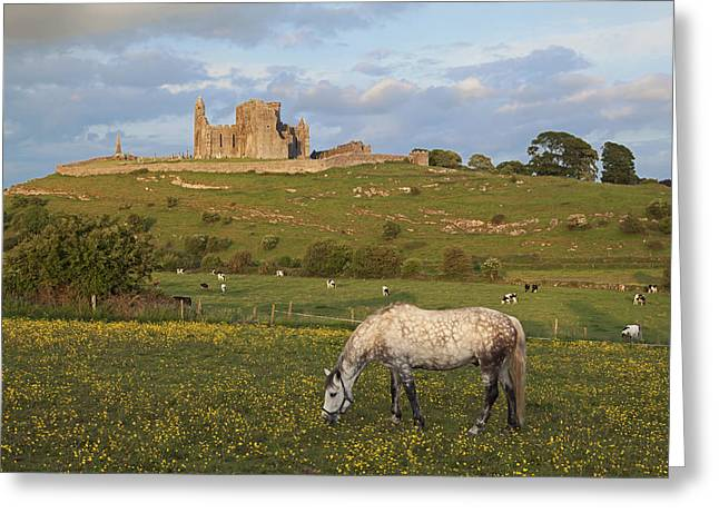 Remains Of Images Greeting Cards - Rock Of Cashel_ County Tipperary Greeting Card by Carl Bruemmer