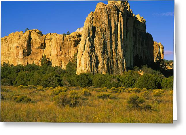 El Morro Greeting Cards - Rock On A Landscape, Inscription Rock Greeting Card by Panoramic Images
