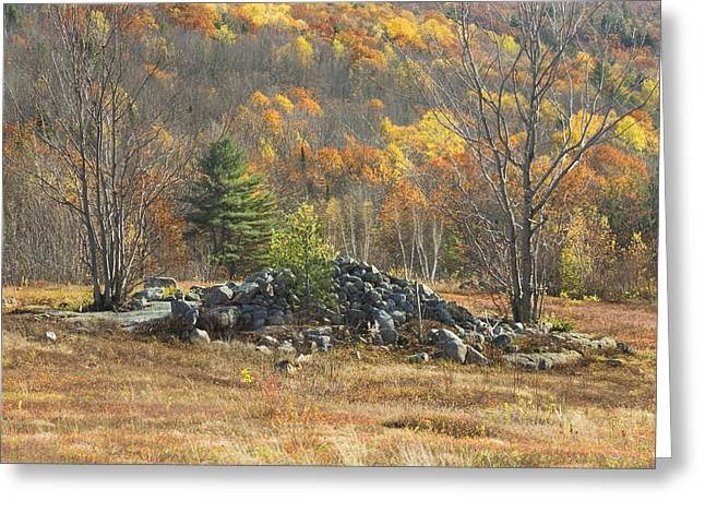 Fall Colors Greeting Cards - Rock Pile In Maine Blueberry Field Greeting Card by Keith Webber Jr