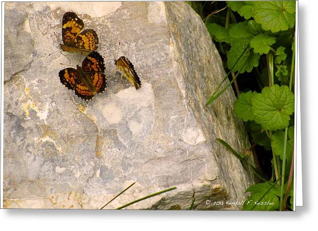 Checkerspot Greeting Cards - Rock Trio Greeting Card by Kendall Kessler