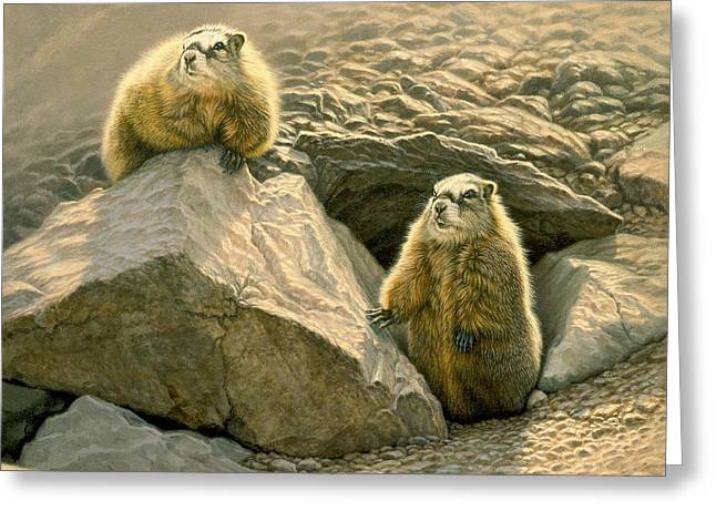 Wildlife Greeting Cards - Rockchucks on the Talus Slope Greeting Card by Paul Krapf