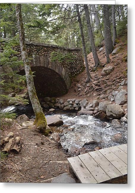 Jordan Trail Greeting Cards - Rockefeller Bridge Acadia National Park Greeting Card by Lena Hatch