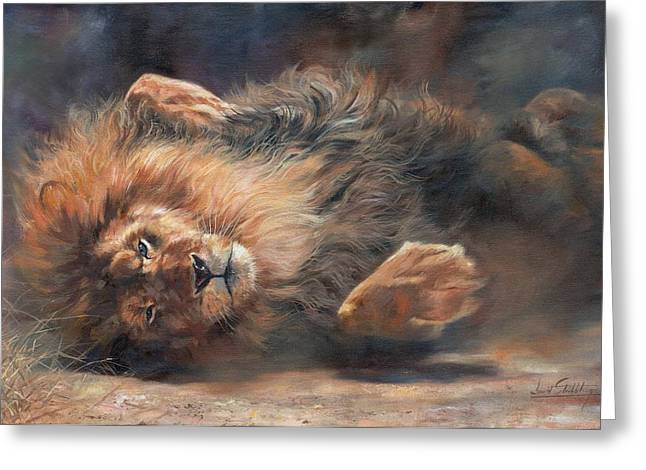 Lions Greeting Cards - Rocking and Rolling Part 2 Greeting Card by David Stribbling