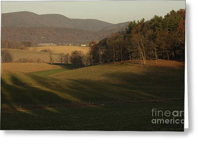 Bucolic Scenes Greeting Cards - Rockingham County Virginia Meadow Greeting Card by Anna Lisa Yoder
