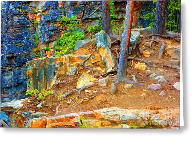 Tree Roots Mixed Media Greeting Cards - Rocks and Root Greeting Card by John Kreiter