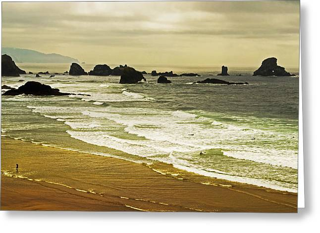 Recently Sold -  - Sea Lions Greeting Cards - Rocks and Beach Greeting Card by Richard Risely