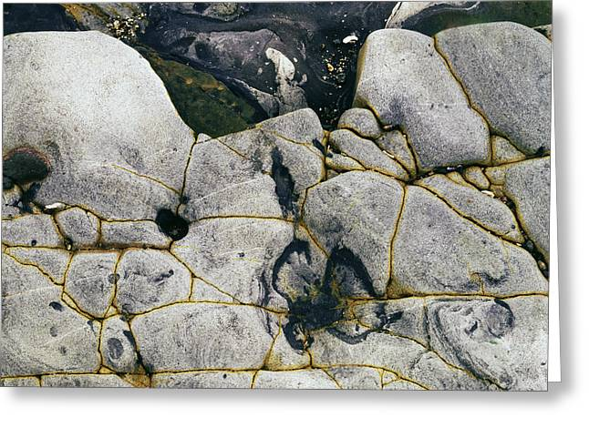 Point Lobos Greeting Cards - Rocks at Point Lobos c2014 Greeting Card by Paul Ashby