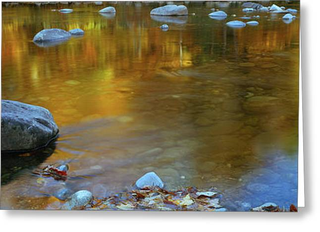 Rocks In A Shallow Stream Greeting Card by Panoramic Images