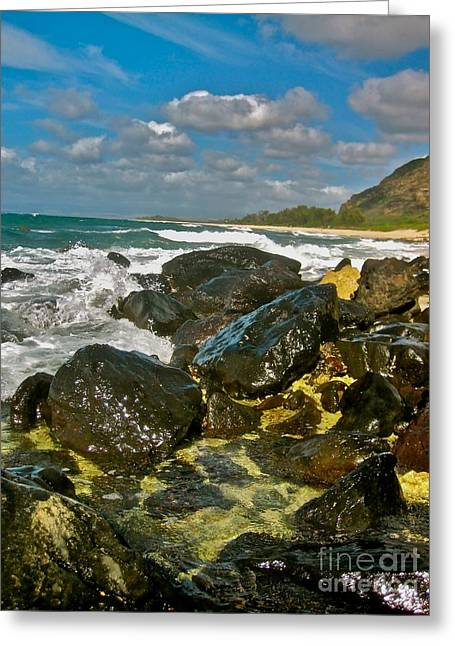 Halona Greeting Cards - Rocks of Mokuleia - No.112  Greeting Card by Joe Finney