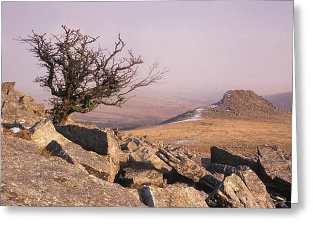 Dartmoor Greeting Cards - Rocks On A Hill, Dartmoor, Devon Greeting Card by Panoramic Images