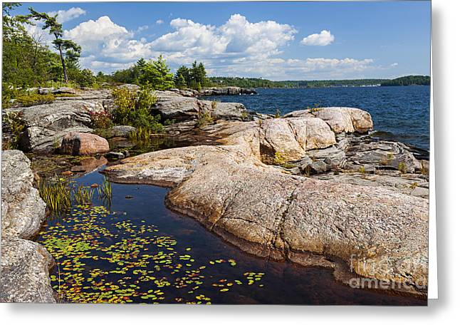 Huron Coast Greeting Cards - Rocks on Georgian Bay shore Greeting Card by Elena Elisseeva