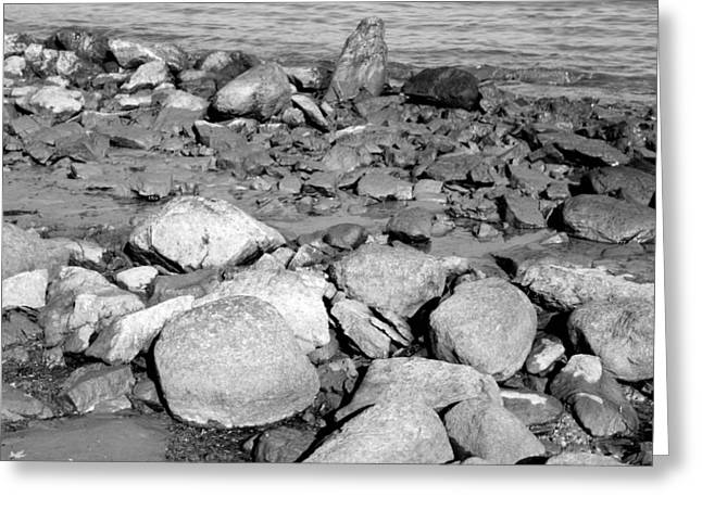 Rocks Greeting Cards - Rocks On Shore Greeting Card by Merv Scoble