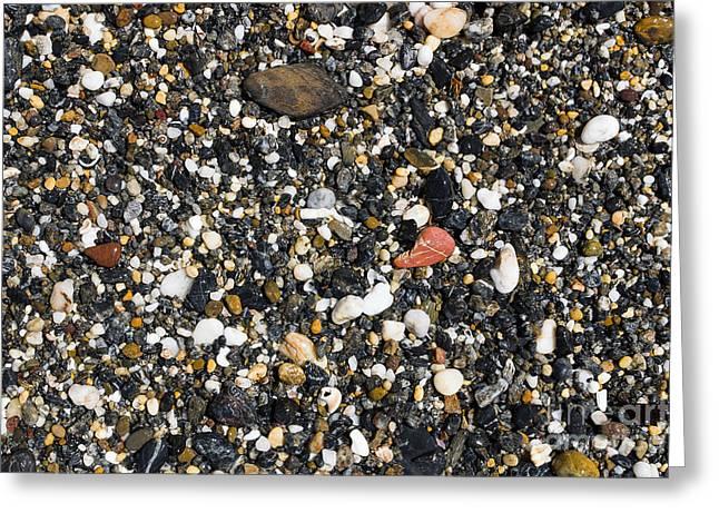 Rocks On The Beach Greeting Card by Steven Ralser