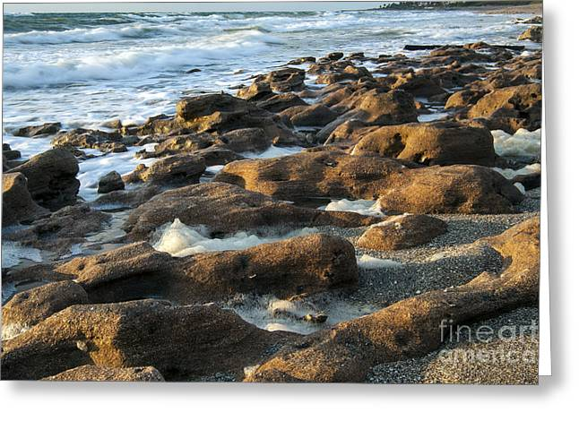 Environemtn Greeting Cards - Rocky Beach at Sunrise Greeting Card by Darleen Stry