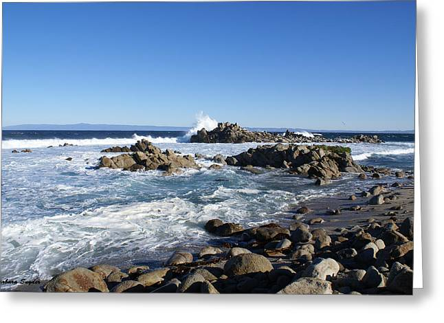 Monterey Ocean Scene Greeting Cards - Rocky Beach on 17 Mile Drive Greeting Card by Barbara Snyder
