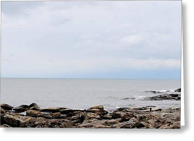 Maine Beach Greeting Cards - Rocky Coast of Maine Greeting Card by JoAnne Bousquet
