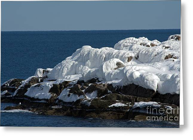 Cape Neddick Greeting Cards - Rocky Coastal Winter Greeting Card by Kevin Fortier