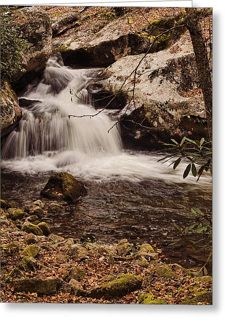 Tennessee River Greeting Cards - Rocky Fork Falls Greeting Card by Heather Applegate