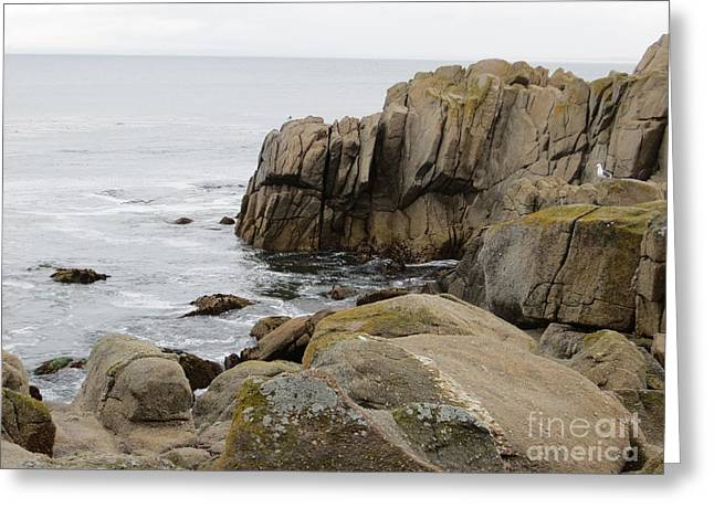 Lilly Pad Greeting Cards - Rocky Formations Greeting Card by Joseph Baril