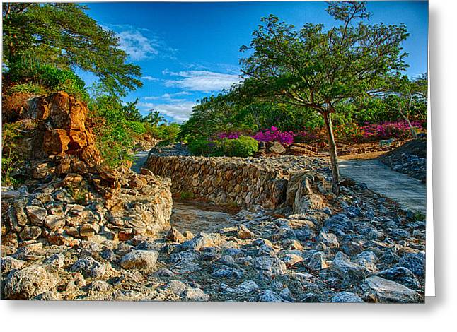 Owfotografik Greeting Cards - Rocky Garden Walk Greeting Card by Omaste Witkowski