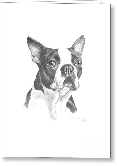 Pet Drawing Drawings Greeting Cards - Rocky Greeting Card by Lee Updike